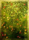 Orchard Tapestry #2 by Foxfire