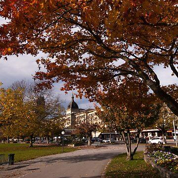 Autumn in Interlaken by mhowellsmead