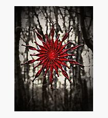 Dark Christmas Photographic Print