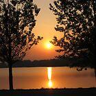 Sun Going Down by Linda Miller Gesualdo