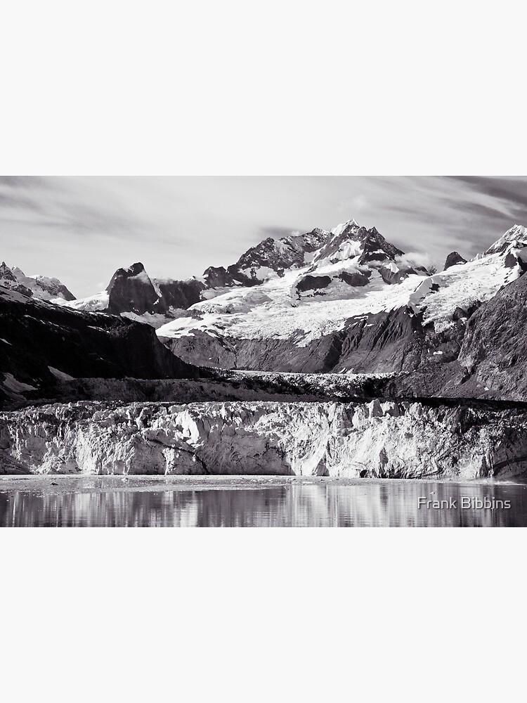 Johns Hopkins Glacier 2010 by organicman2