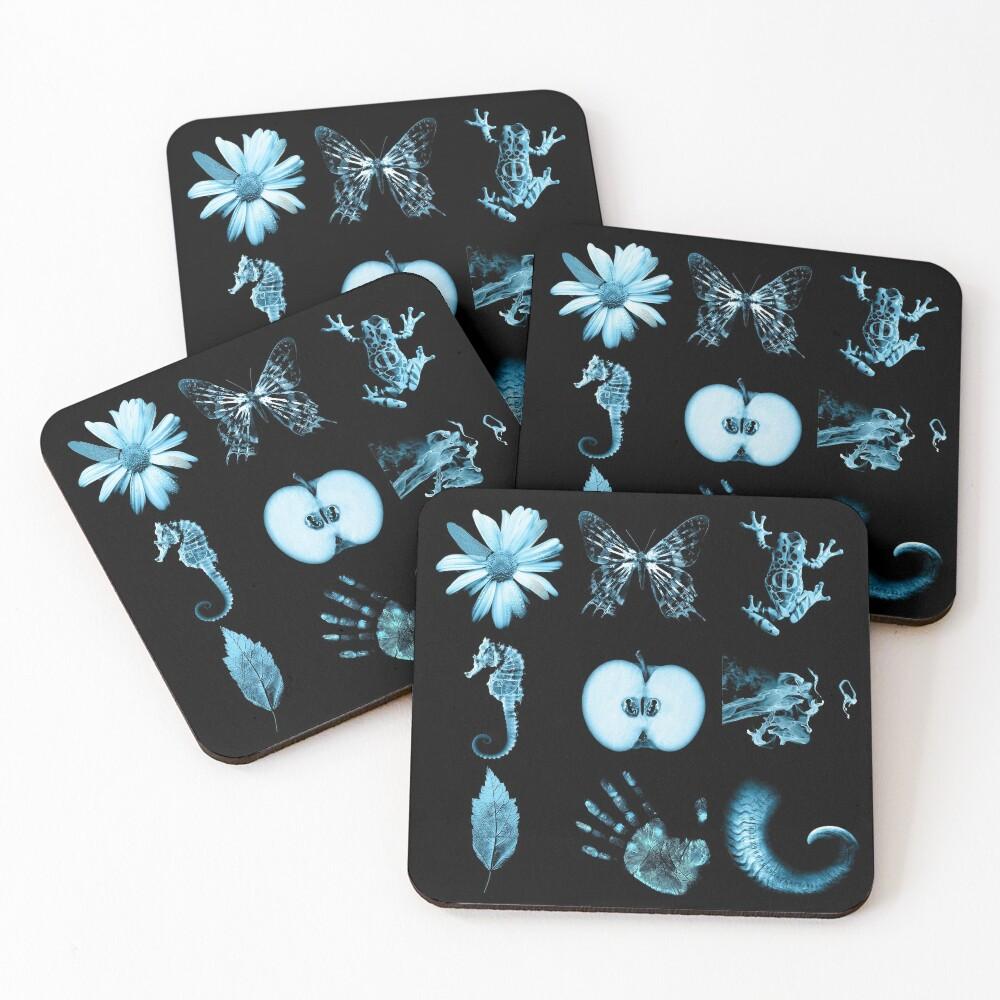 All nine glyphs of Fringe Coasters (Set of 4)