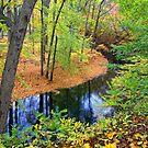 Rancocas Creek by Margaret Barry
