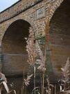 Richmond Bridge, Tasmania by Odille Esmonde-Morgan