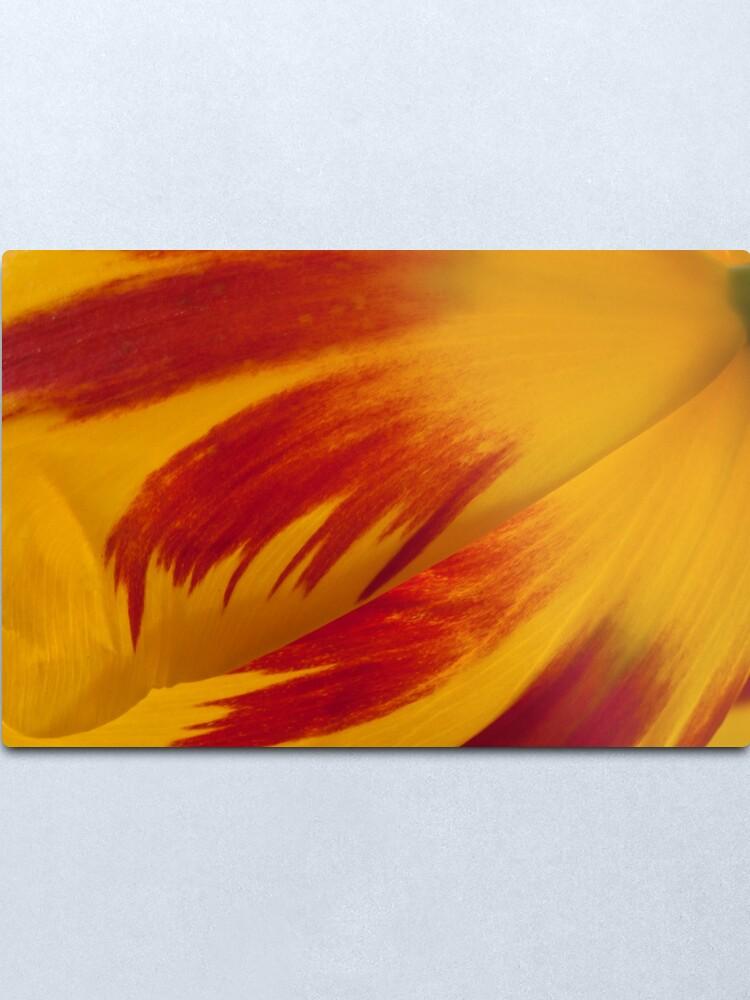 Alternate view of Tulip Caresses Metal Print