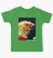 Cat On Red Tin Kids Clothes