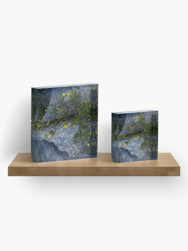 Alternate view of Tormentil, Dun Aengus, Inishmore, Aran Islands Acrylic Block