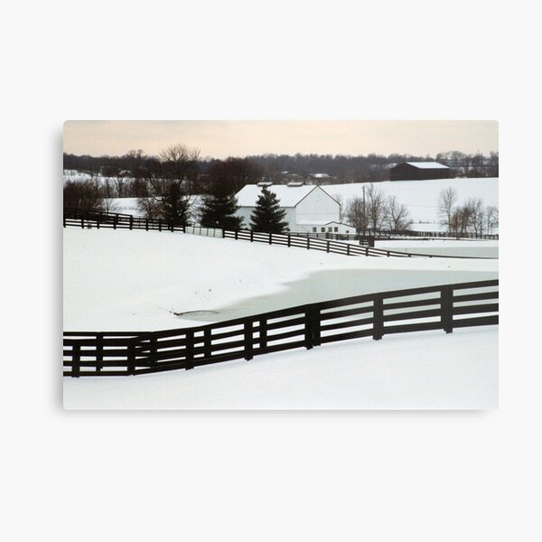 Snowy Day - Richwood Farm Metal Print
