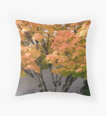 Celebrating with Us Throw Pillow