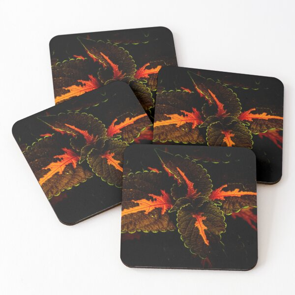 Shadow Green Leaves Coasters (Set of 4)