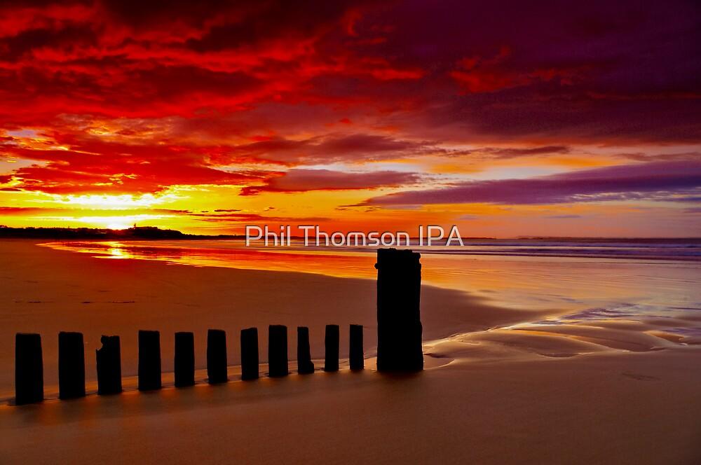 """""""Crescendo"""" by Phil Thomson IPA"""