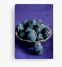 Plums Canvas Print