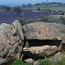 Boulders by Roslyn Slater