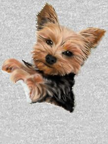Chewie the Adorable Yorkie Kids Pullover Hoodie