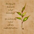 Complicated plant-botanical art by cardwellandink