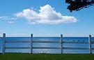 aeroplane cloud, penguin, tasmania by mellychan