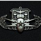 Bomb Squad Techician Senior by jcmeyer