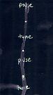 Pulse/Tune by SFlora