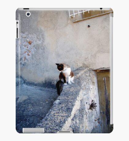 An Italian Afternoon iPad Case/Skin