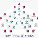 Polyhedral Relations by Allison Chen
