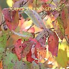 Dogwood in the Fall (Happy Thanksgiving) by DebbieCHayes