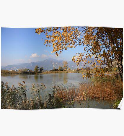 Quiet autumn Poster