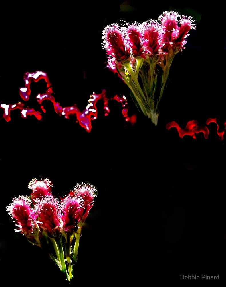 Floating Flowers 4 by Debbie Pinard