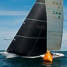 Thisbe at the Windward Mark by wolftinz