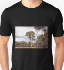 Stately Eucalyptus Tree T-Shirt