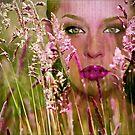 Summer by Kym Howard