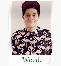 Pete Davidson-- Weed Poster
