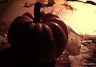 Baby Pumpkin by Marcia Rubin