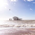The remains of the West Pier, Brighton, England by Zoe Power