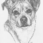 Chug Portrait in Graphite by BarbBarcikKeith