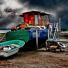 The Old Houseboat by Brian Tarr