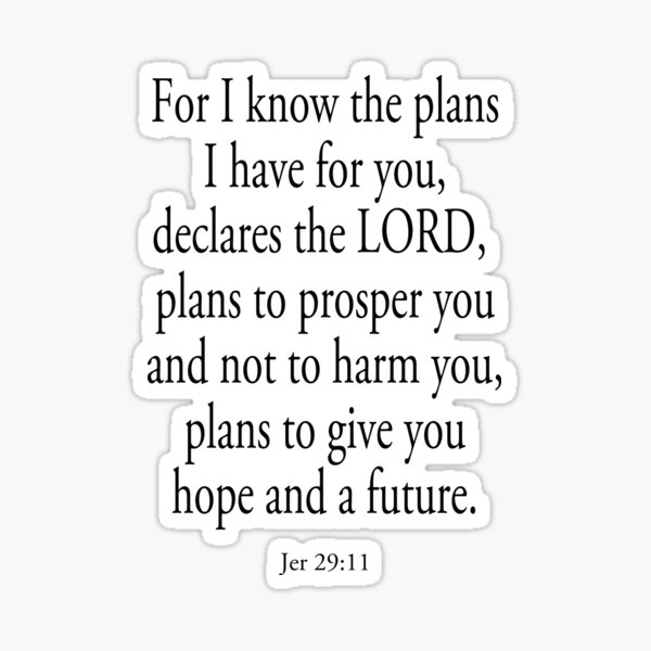 BIBLE. For I know the plans I have for you... Sticker