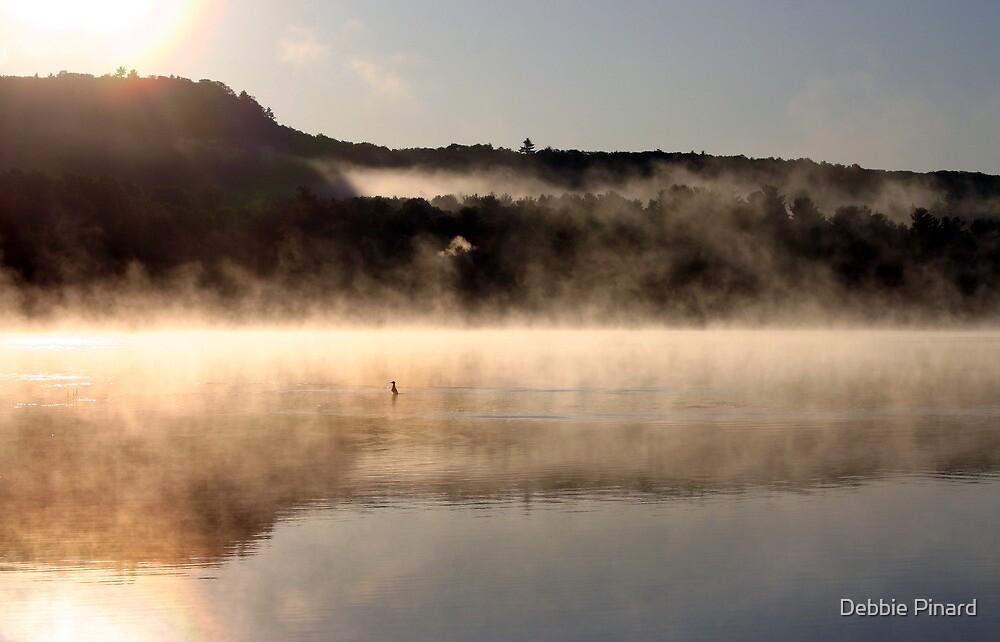Duck on a Misty Morning - Bonnechere River by Debbie Pinard