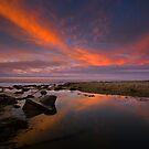Arroyo Burro Creek Estuary by David Orias