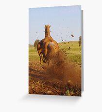 Hoon'en Horse Greeting Card