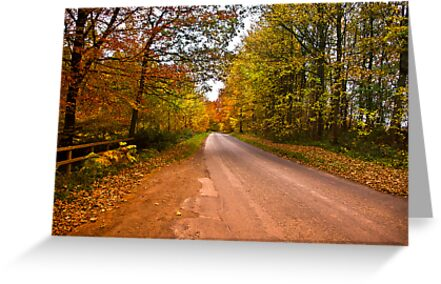Country Road by Trevor Kersley
