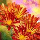 Floral Pop by Robyn Selem