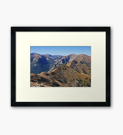exhilaration Framed Print