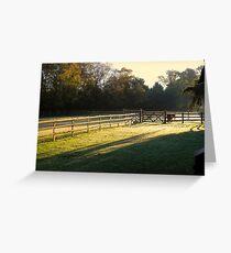 Autumn Warmth  Greeting Card