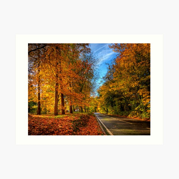 Winchester Autumn Colour Art Print