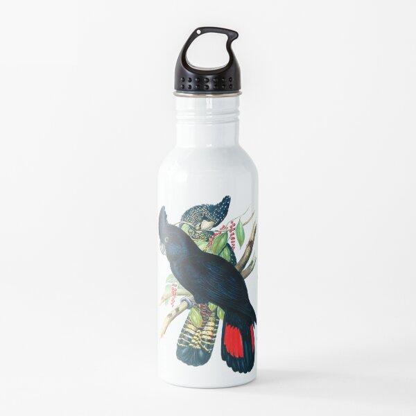 Australian Banksian Black Cockatoo Water Bottle