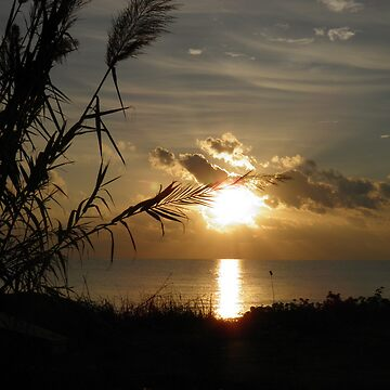 Orange glow Cyprus sunrise by angela-mcintyre