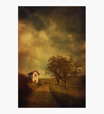 Little vineyard house Photographic Print