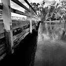 stock route bridge in flood wodonga,black & white by dmaxwell