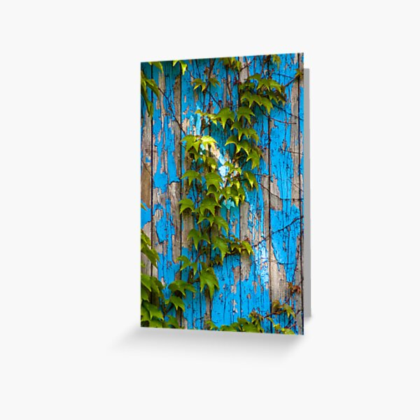 Hedera helix by blue door Greeting Card
