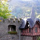 Overlook at Cochem Castle by Gayle Dolinger